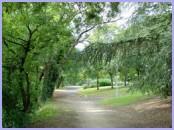 peaceful_park