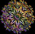 floral-design